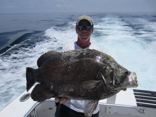 destin charter fishing 100 proof charters deep sea fishing