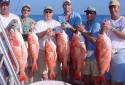 Deep Sea Fishing - Nice Red Snappers caught in Destin