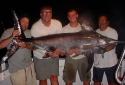 150lbs swordfish