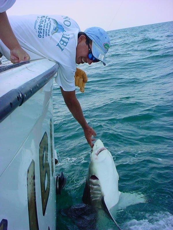 Destin charter fishing 100 proof charters deep sea fishing for Destin fl deep sea fishing