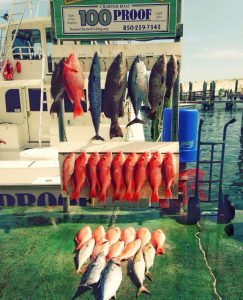 fishing in destin florida