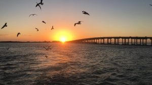 Destin Fishing Blog