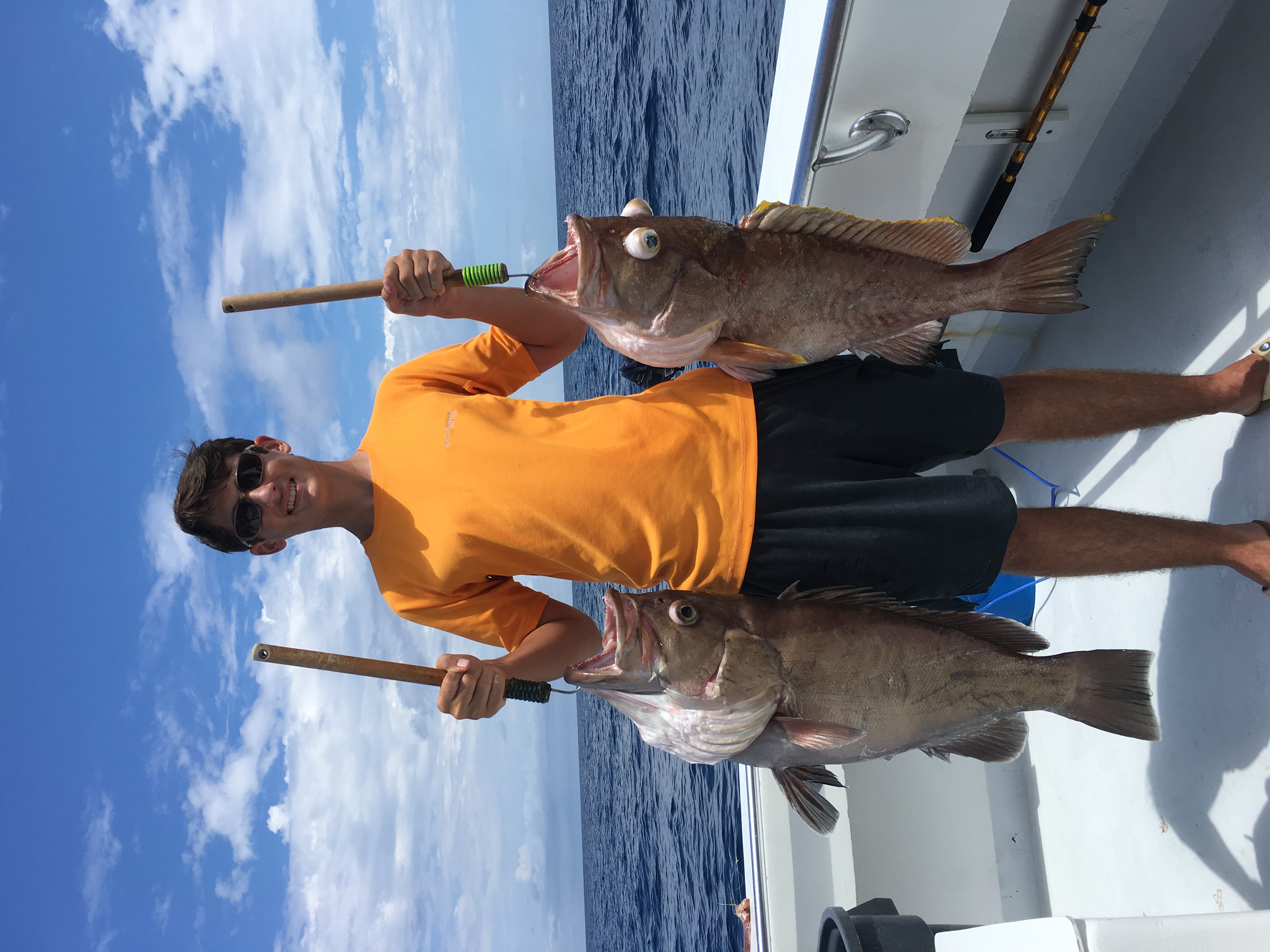 Groupers caught on the 100 Proof