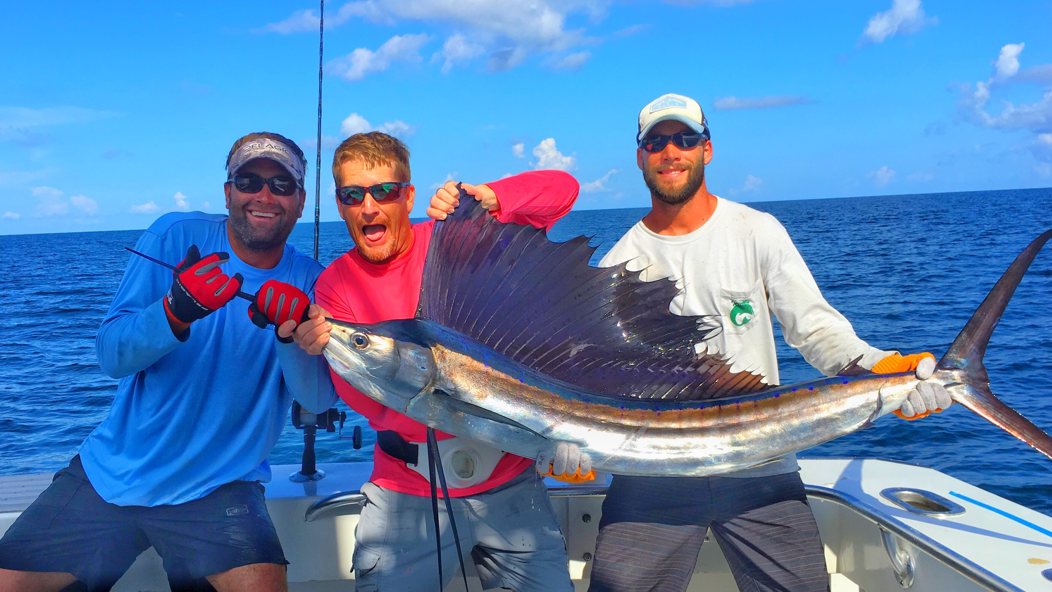 Sailfish on fishing trips in Destin Fl